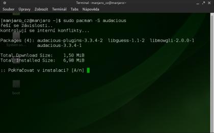 audacious_terminal